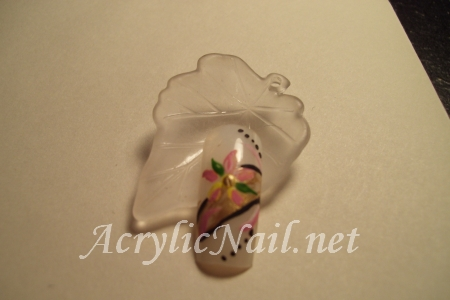 My Acrylic Nail